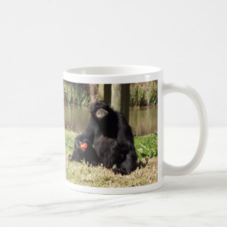 SIAMANG GIBBON, DUBBO ZOO, AUSTRALIA CLASSIC WHITE COFFEE MUG