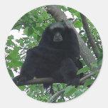 Siamang Gibbon Round Sticker