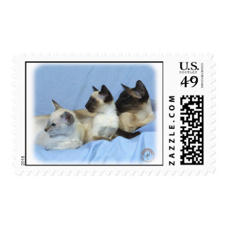Siamese Cat 9W055D-074 Postage Stamp
