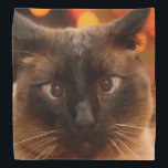 """Siamese Cat Bandana<br><div class=""""desc"""">The beautiful face of a Siamese cat decorates this lovely bandana</div>"""