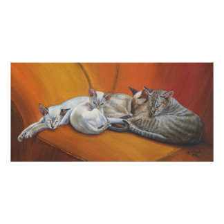 "Siamese Cat Cats ""Family Nap"" Art poster"