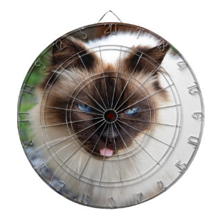 Siamese cat dartboard with darts