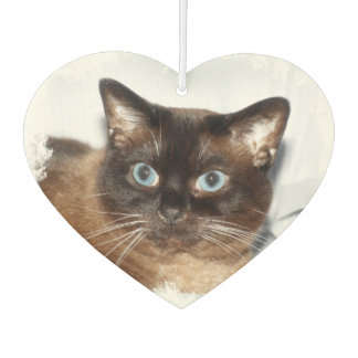 Siamese cat face air freshener