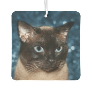 Siamese cat face car air freshener