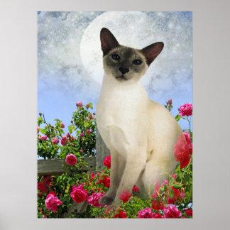 Siamese Cat in roses Poster