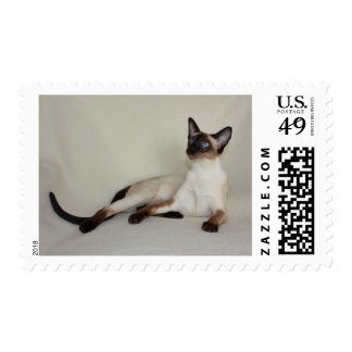 Siamese Cat Jazell Stamp 1st. Class