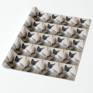 Siamese Cat Jazell Gift Wrap Paper