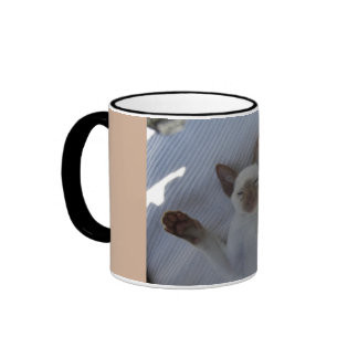 Siamese cat ringer coffee mug