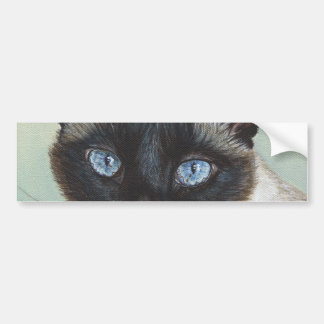 Siamese Cat Murphy Bumper Sticker