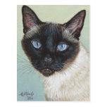 Siamese Cat Murphy Post Cards