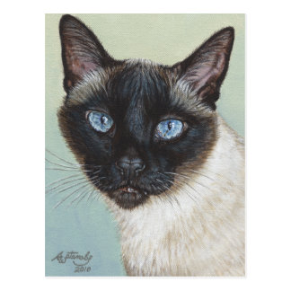 Siamese Cat Murphy Postcard