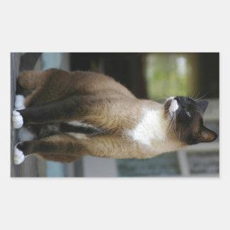 Siamese Cat on the Porch Rectangular Sticker