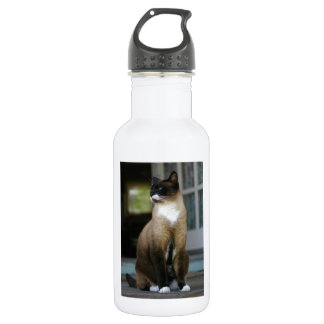Siamese Cat on the Porch Water Bottle