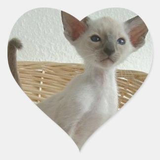 Siamese Cat Pet Purr Meow Kitty Destiny Heart Sticker