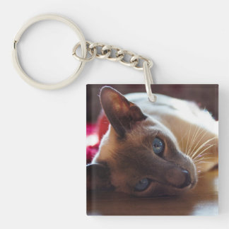 Siamese Cat Pin Badge Keychain