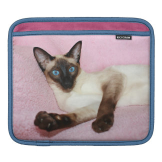 Siamese Cat Pink Background Sleeve For iPads