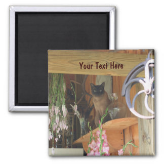 Siamese Cat Posing Animal Photography Magnet #2
