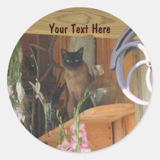 Siamese Cat Posing Animal Photography Sticker #2