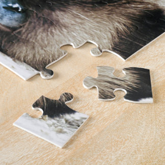 Siamese Cat Jigsaw Puzzles