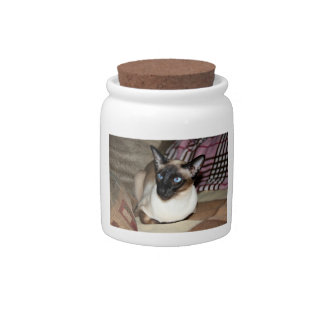 Siamese Cat Relaxing on Couch Candy Jar