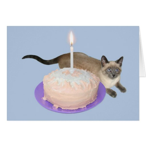 Siamese Cat with Birthday Cake Card