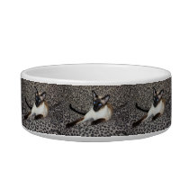 Siamese Cat with Leopard Print Wild Animal Spots Bowl