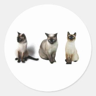 Siamese Cats Classic Round Sticker