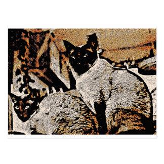 Siamese Cats of Yore Postcard