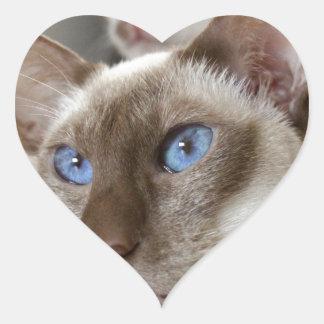 Siamese  Cats Pets Animals Heart Sticker