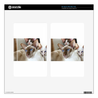 Siamese  Cats Pets Animals Kindle Fire Skins