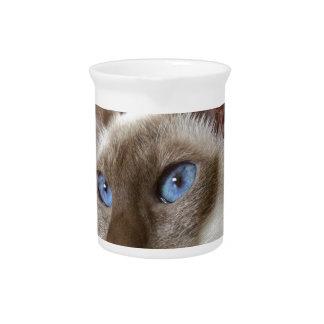 Siamese  Cats Pets Animals Beverage Pitchers