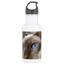 Siamese  Cats Pets Animals Stainless Steel Water Bottle