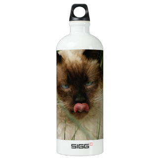 Siamese Feral Cat With Tongue Out Aluminum Water Bottle