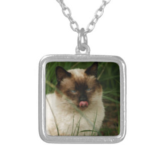 Siamese Feral Cat With Tongue Out Jewelry