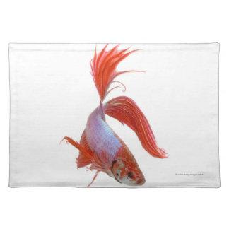 Siamese fighting fish (Betta splendens) Place Mats