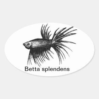 Siamese fighting fish- Betta splendens Sticker