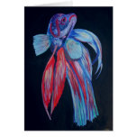 Siamese Fighting Fish Cards