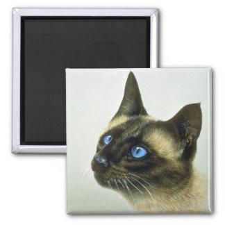 Siamese (head study) 2 inch square magnet