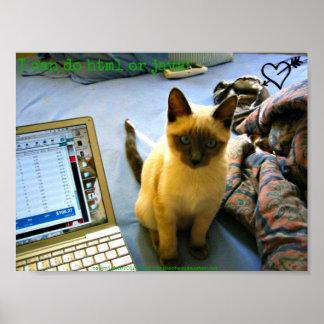 Siamese Kitten Adviser Poster
