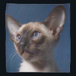 "Siamese Kitten Bandana<br><div class=""desc"">A Siamese kitten decorates this lovely bandana</div>"