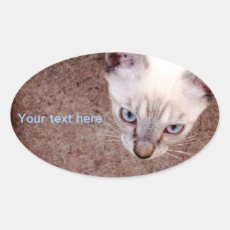 Siamese kitten oval sticker or address label