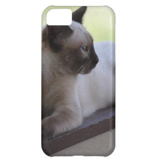 Siamese Kitten Photograph iPhone 5C Covers
