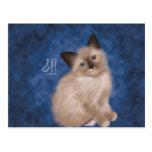 Siamese Kitten Postcards