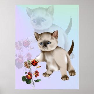 Siamese Kitten VS Ladybug  Poster