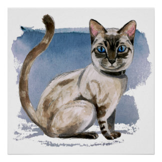 Siamese Kitten Watercolor Painting Poster