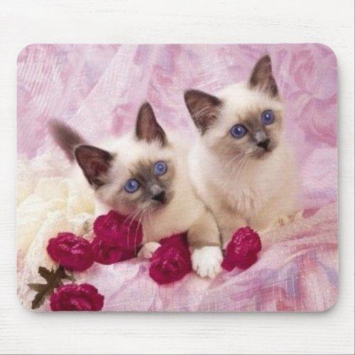 siamese kittens mousepad