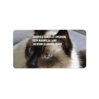 Siamese Kitty Address Label