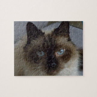 Siamese jigsaw puzzles zazzle for Siamese fighting fish crossword