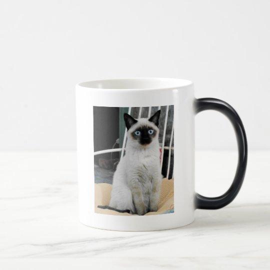 Siamese Magic Mug
