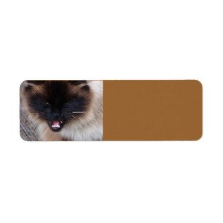 Siamese Persian Kitty Cat  Avery Label